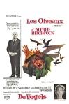 les_oiseaux4