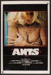 ants_JC00548_L