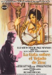 cat on a hot tin roof spanish movie poster2