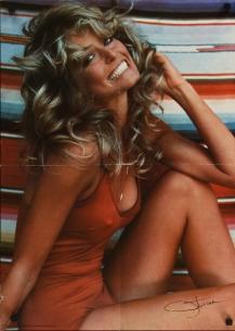 farrah fawcett swimsuit poster